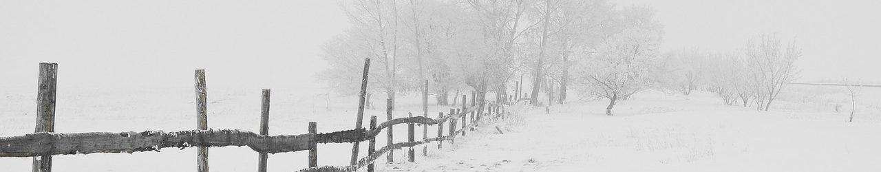 Winter – Wenig Licht und Kälte drücken aufs Gemüt